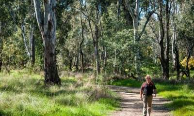 Immerse yourself in Indigenous culture with a walk on the Flats