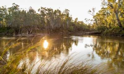 Improve your health and wellbeing with Meditation by the River